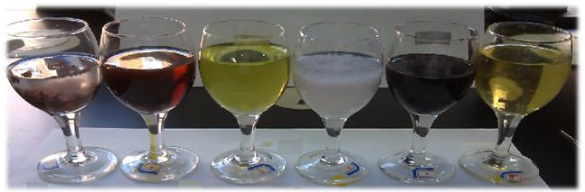 加入三氯化铁溶液后的效果图.png